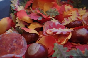 Autumn sensory box