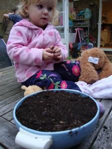 terrine into plantpot