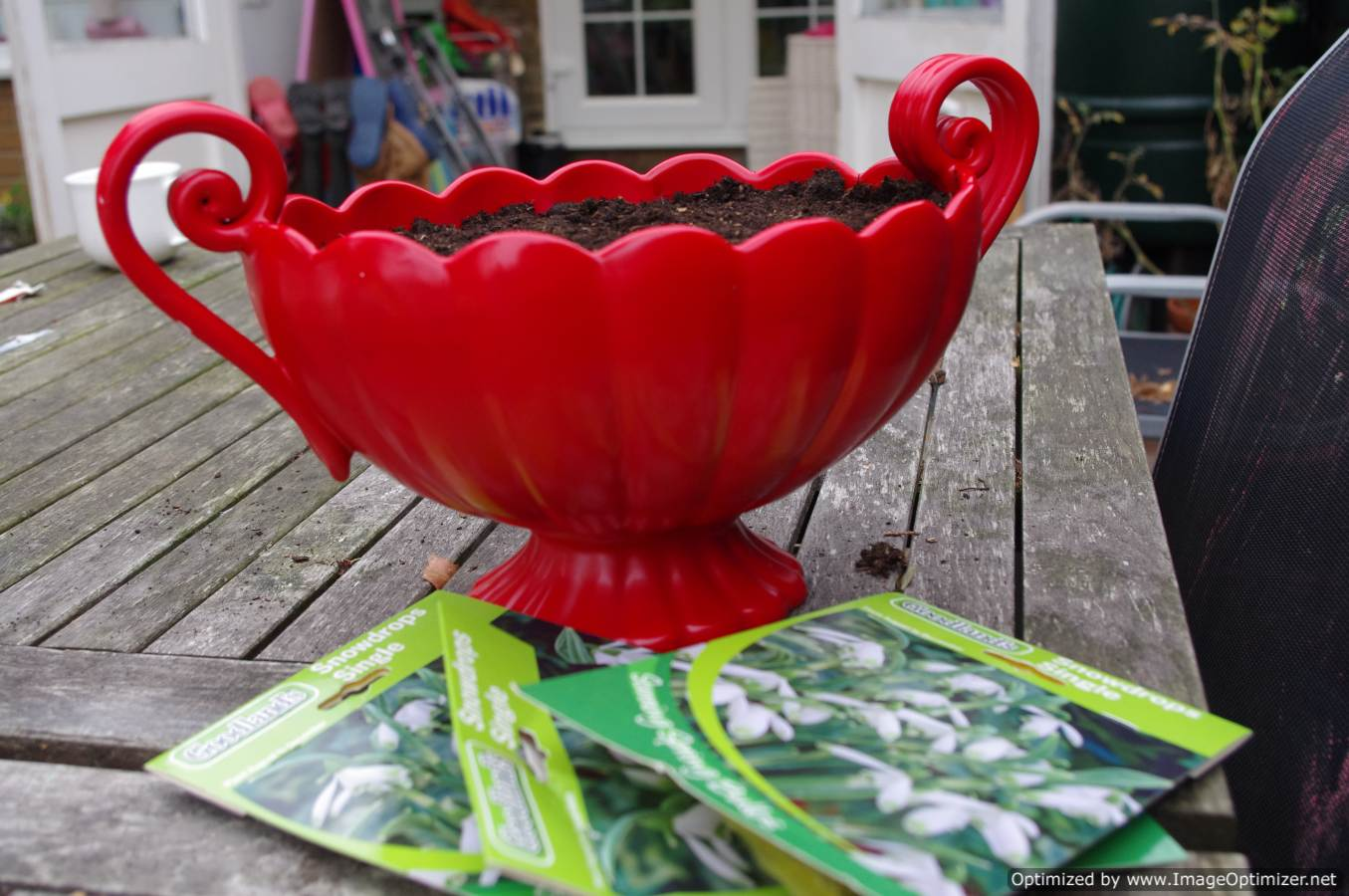 Planting spring bulbs: upcycled crockery