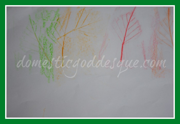 Hockney tree rubbings