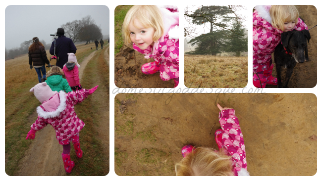 Knole Park Review