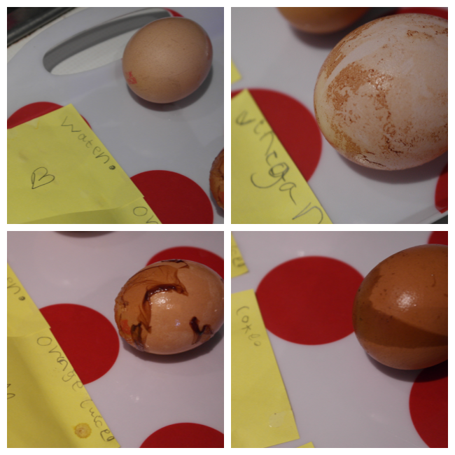 what happens when you soak an egg in experiment