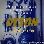 Dyson DC41 Vacuum Review